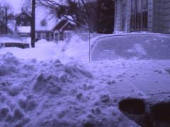my driveway 2