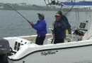 Block Island Striped Bass Fishing With Northeast Angling